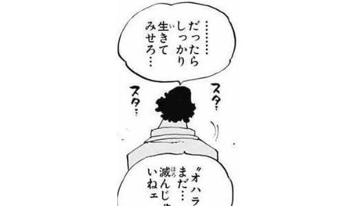 【布団乾燥機】アイリスオーヤマ「カラリエ FK-C2-WP」使用レビュー!